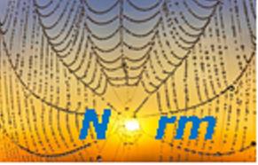 Bildbeschreibung: Auf dem Bild ist ein Spinnennetz zu sehen, dass von der Sonne angeschienen ist. Das Wort NORM steht vor dem Spinnennetz. Ende der Bildbeschreibung.