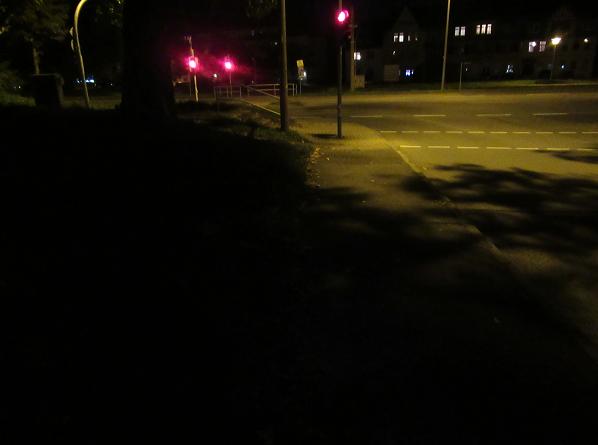 Das Bild 3 zeigt eine eingeschränkte Straßenbeleuchtung durch einen stark belaubten Baum.